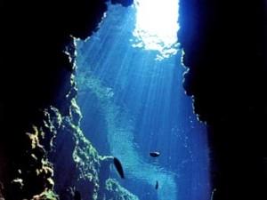 diving_1