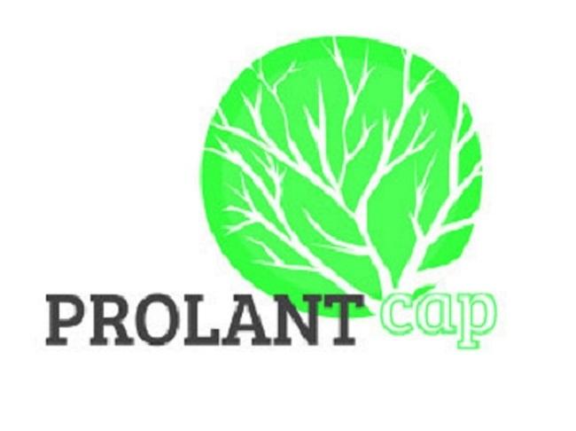 Prolant Cap